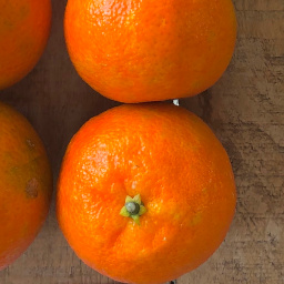 Florida Early seedless mandarin
